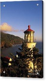 Heceta Head Lighthouse Acrylic Print by Greg Vaughn - Printscapes