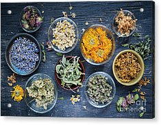 Acrylic Print featuring the photograph Herbs by Elena Elisseeva