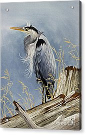 Acrylic Print featuring the painting Herons Windswept Shore by James Williamson