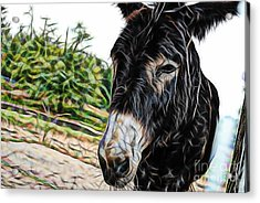 Hi Acrylic Print by Marvin Blaine