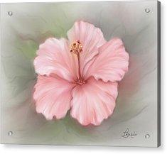 Hibiscus  Acrylic Print by Bonnie Willis