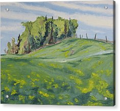Hills Forest And Dadelions  Acrylic Print by Francois Fournier