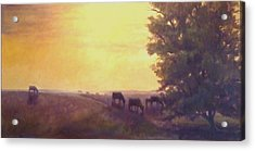Hillside Silhouettes Acrylic Print by Ruth Stromswold