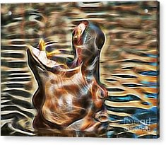 Hippo Acrylic Print by Marvin Blaine