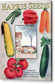 Historic Harris Seeds Catalog Acrylic Print