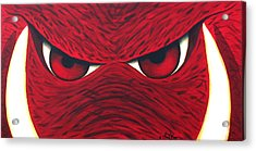 Hog Eyes 2 Acrylic Print by Amy Parker