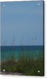 Holmes Beach Florida 2 Acrylic Print by Lisa Gabrius