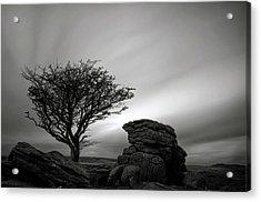 Holwell Tor And Lone Tree On Dartmoor Acrylic Print