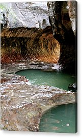 Acrylic Print featuring the photograph Hope by Brandy Little