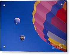 Hot Air Balloons Acrylic Print by Greg Vaughn - Printscapes