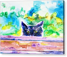 Hunt Acrylic Print