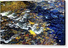 Hyalite Creek Acrylic Print