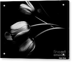 Incognito Acrylic Print by Elfriede Fulda