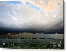 Into The Storm Acrylic Print by David Lee Thompson