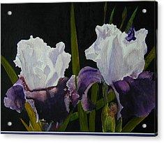 Iris Acrylic Print by Dwight Williams