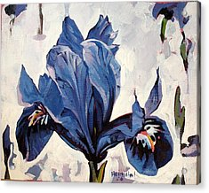 Acrylic Print featuring the painting Iris Snow by Tim  Heimdal