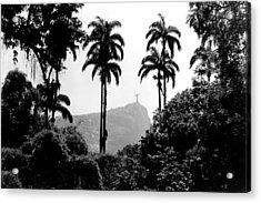 Jardim Botanico - Rio De Janeiro Acrylic Print by Eduardo Costa