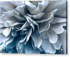 Acrylic Print featuring the photograph Jet Stream by Darlene Kwiatkowski