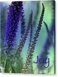 Joy Acrylic Print by Bonnie Bruno