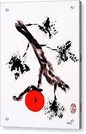 Jukushita Kaki Acrylic Print by Roberto Prusso