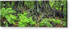 Acrylic Print featuring the photograph Jungle Roots by Les Cunliffe