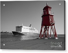 Just Arriving Acrylic Print by Nichola Denny