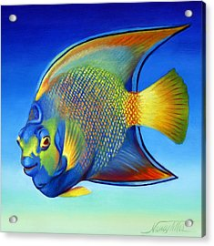 Juvenile Queen Angelfish Acrylic Print