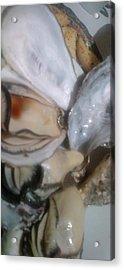Oysters In Ponzu Vinegar Acrylic Print