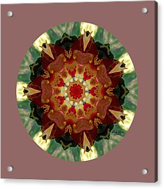 Kaleidoscope - Warm And Cool Colors Acrylic Print