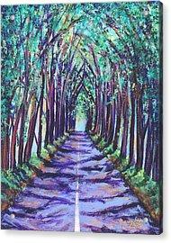 Kauai Tree Tunnel Acrylic Print
