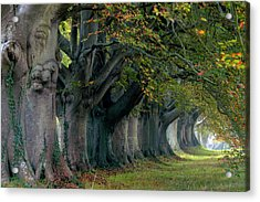 Kingston Lacy - England Acrylic Print