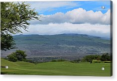 Acrylic Print featuring the photograph Kohala Mountain by Pamela Walton