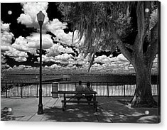 Acrylic Print featuring the photograph Lake View by Lewis Mann