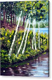 Lakeside Birches Acrylic Print by Anne Trotter Hodge