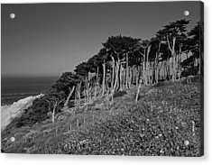 Lands End In San Francisco Acrylic Print