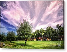 Acrylic Print featuring the photograph Landscape  by Charuhas Images