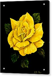 Large Yellow Rose Acrylic Print