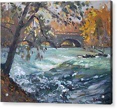 Late Afternoon By Niagara River Acrylic Print by Ylli Haruni