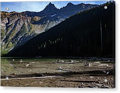 Acrylic Print featuring the photograph Late Afternoon On Avalanche Lake by Lon Dittrick