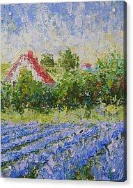 Lavender Field Provence Acrylic Print