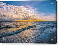 Acrylic Print featuring the photograph Leading Edge by Steven Ainsworth