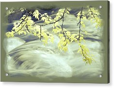 Leaves Over Gossamer Waters Acrylic Print