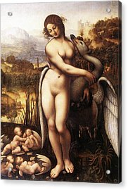 Leda And The Swan Acrylic Print by Leonardo da Vinci