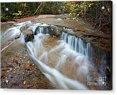 Ledge Brook - White Mountains New Hampshire Usa Acrylic Print by Erin Paul Donovan