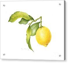 Lemon Acrylic Print by Fran Henig