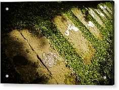 Acrylic Print featuring the photograph Light Footsteps In The Garden by T Brian Jones