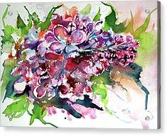 Lilac Acrylic Print by Kovacs Anna Brigitta