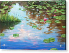 Lily Pond Acrylic Print by Graham Gercken