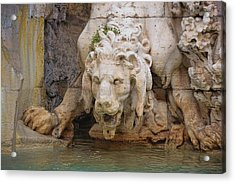 Lion In The Fountain Acrylic Print by JAMART Photography