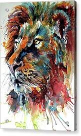 Acrylic Print featuring the painting Lion by Kovacs Anna Brigitta